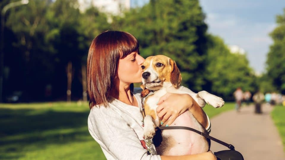 How to Show Affection to Your Dog (Properly!)